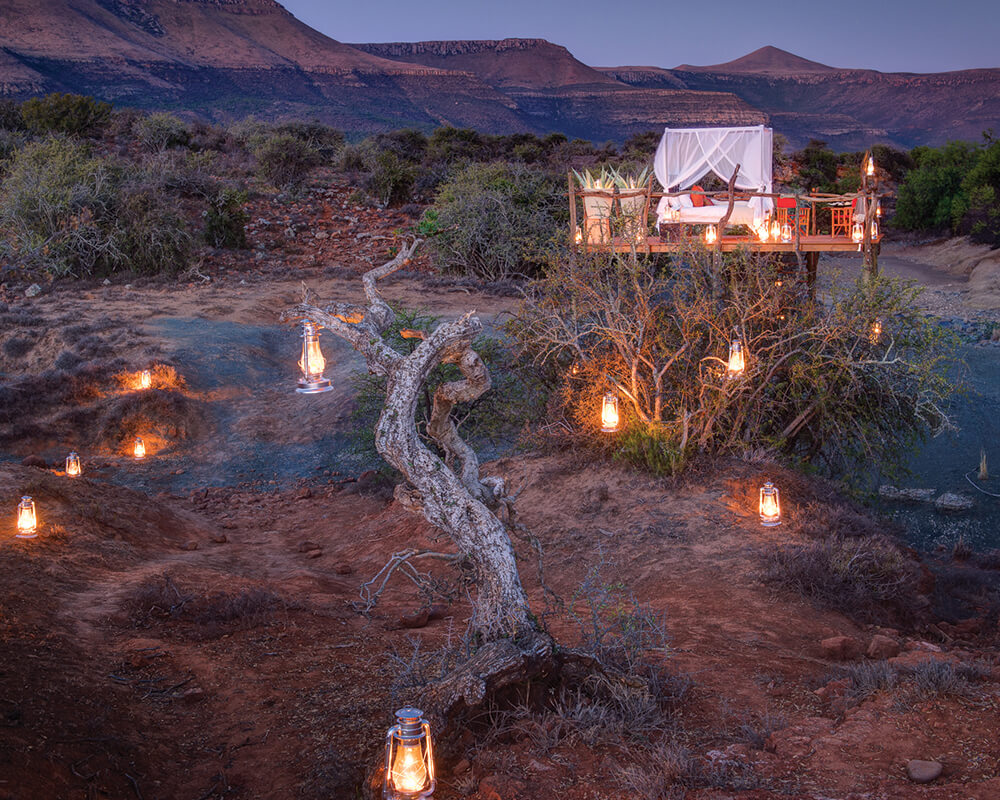 south-africa-conservation-safari-star-bed