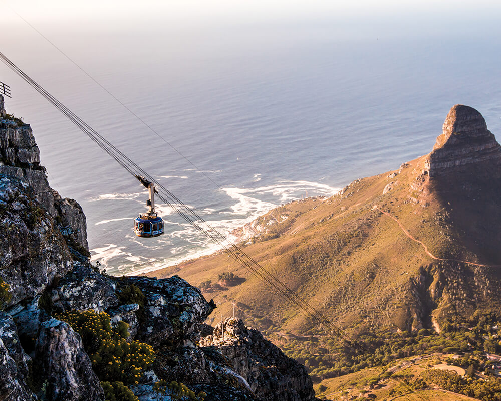 south-africa-conservation-safari-table-mountain