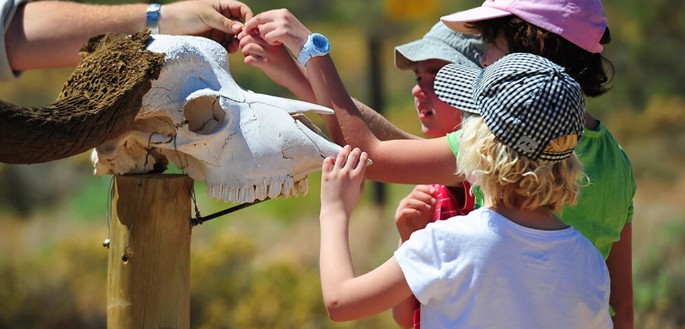 kids on safari programme at sanbona gondwana family lodge
