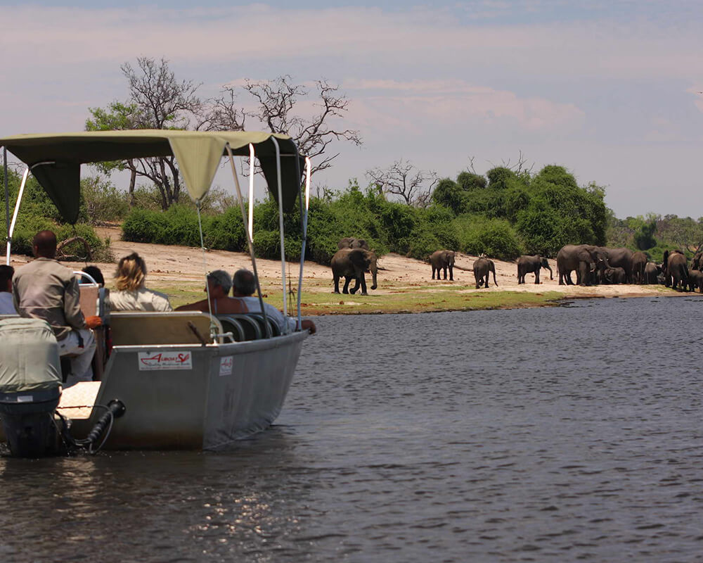 botswana-family-safari-elephant-valley-lodge-boat-safari