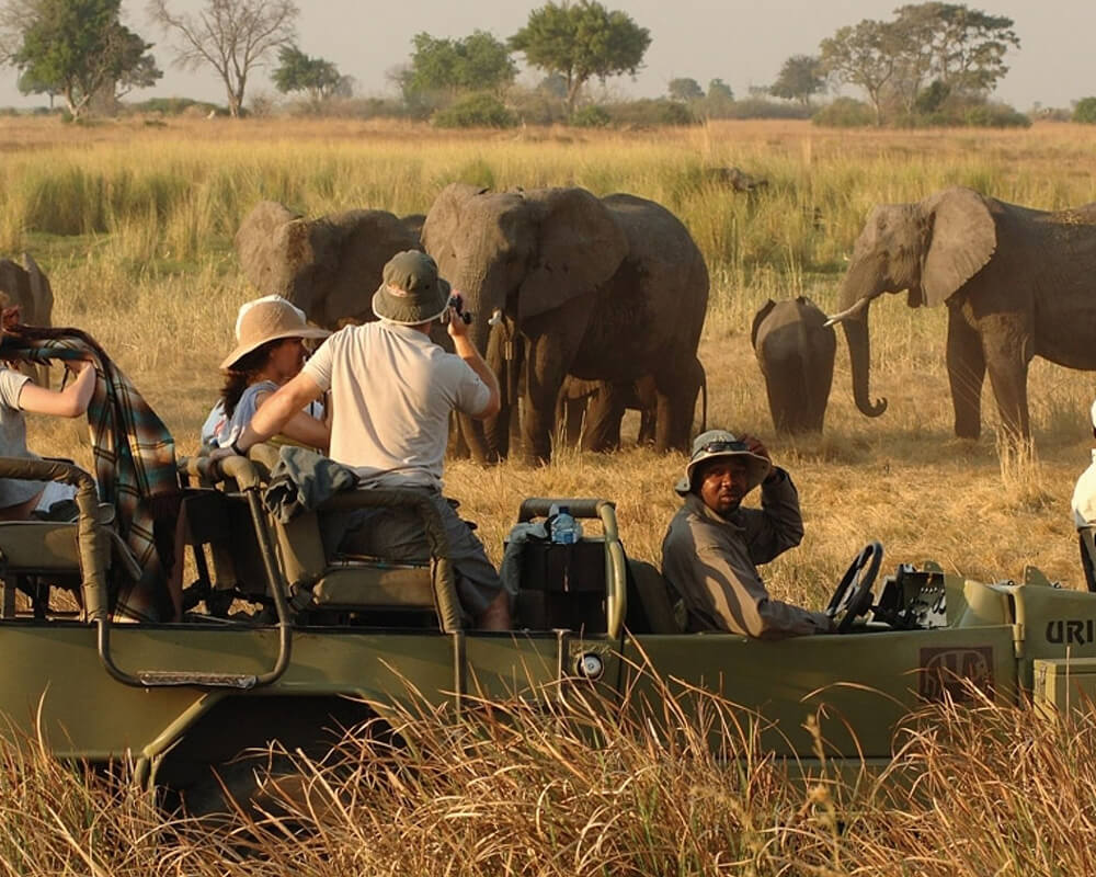 elephant-valley-lodge-botswana-family-safari