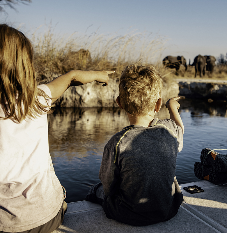 feature-image-botswana-family-safari