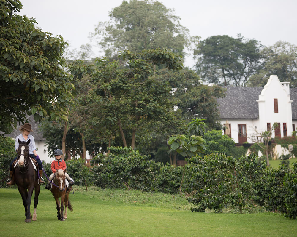 zanzibar-vacation-the-manor-horse-riding