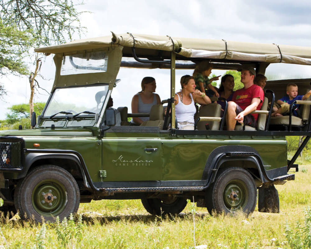 mushara-bush-camp-game-drive