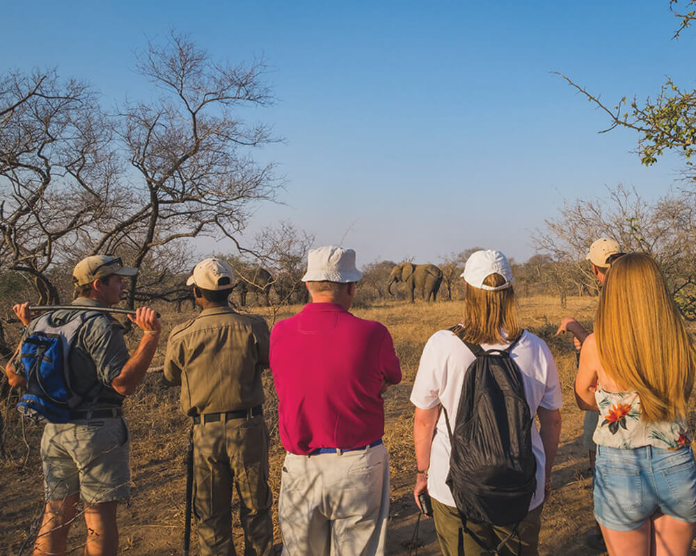 walking-safari-camp-jabulani