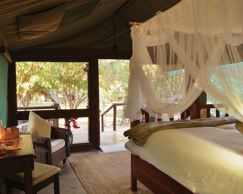 chobe-safari-elephant-valley-forest-tent
