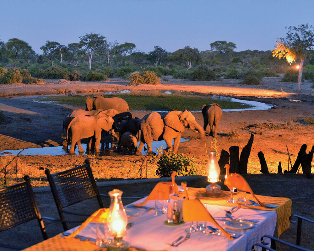 chobe-safari-elephant-valley-lodge-waterhole