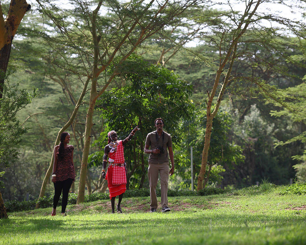 lion-king-adventure-sarova-lion-hill-walking-safari