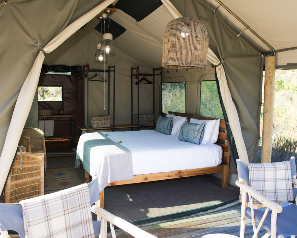 tented-suite-eco-camp-gondwana