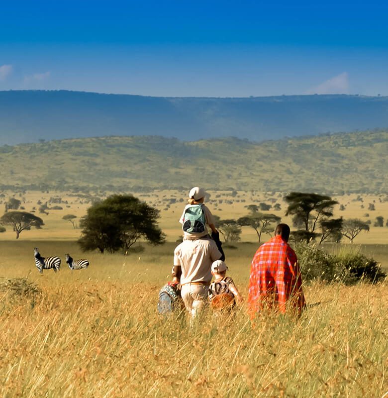 serengeti family safari