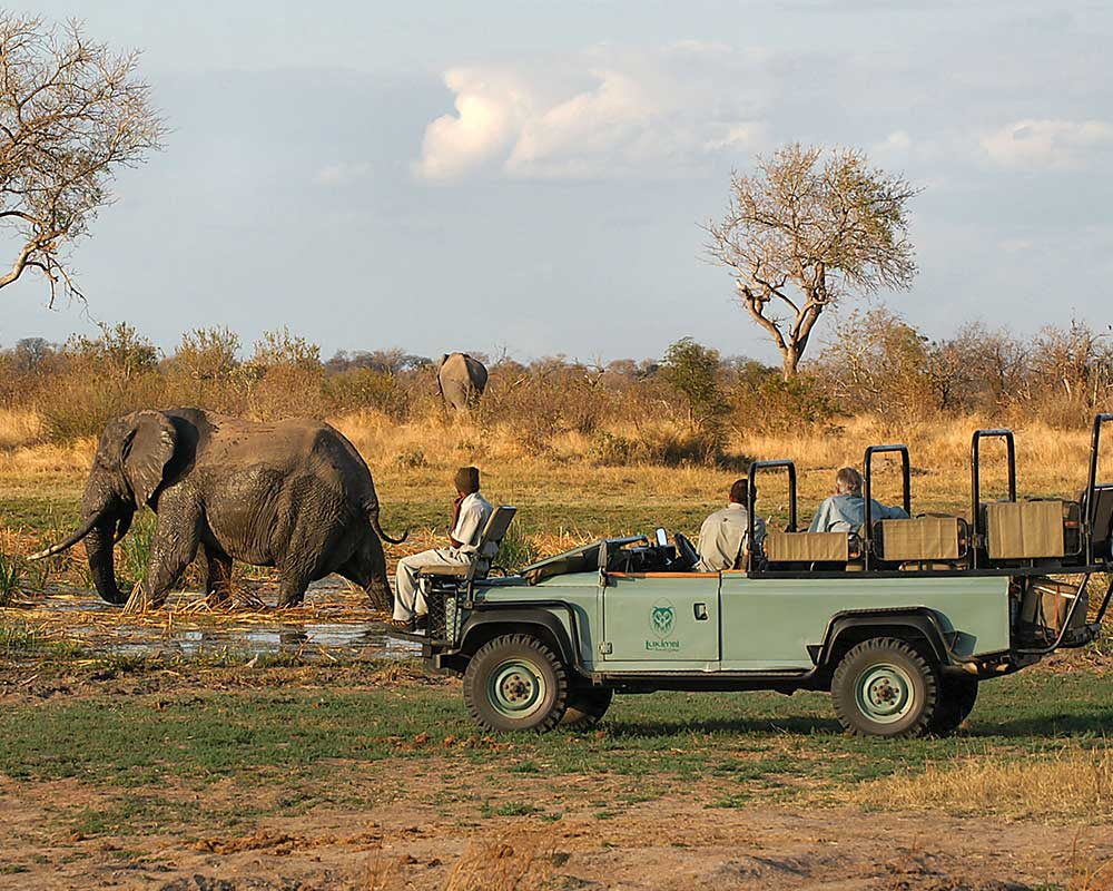 Lukimbi-safari-lodge-game-drive