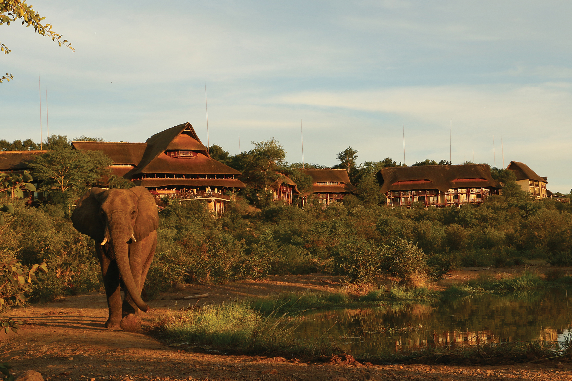 vic-falls-lodge