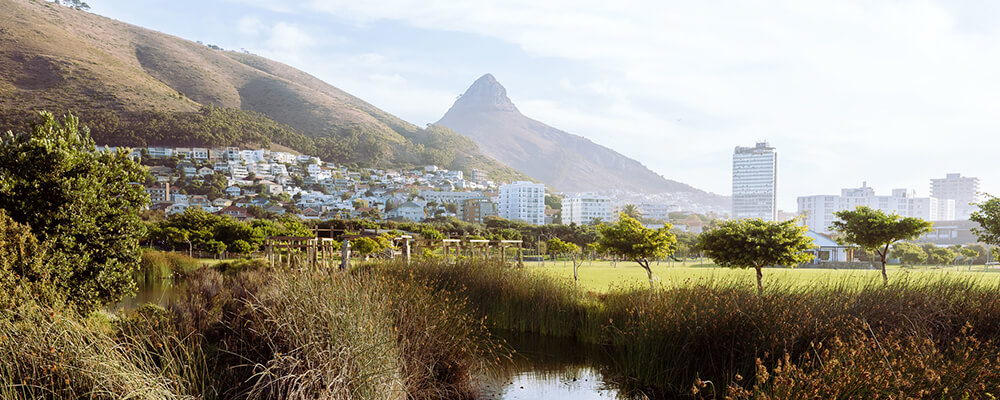 Green Point Eco Park with Lions Head in the vista